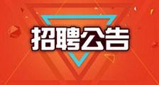 招聘公告 ▎应届毕业生、实习生(图文)
